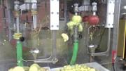 Машина для очистки,  нарезания,  удаления сердцевины яблок 500 кг/час
